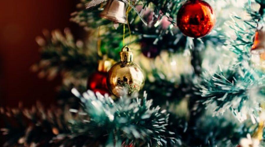 Cinque spunti su cosa fare a Pisa a Natale 2020